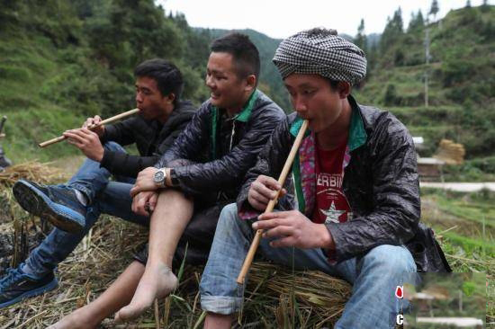 岑秋苗寨年轻人在田埂上吹奏苗笛,为烧鱼节助兴。