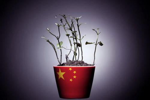 中国9月贸易帐出炉!下半年经济或放缓收场?
