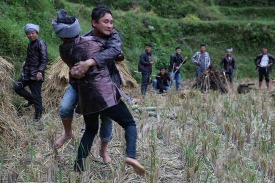 烧鱼准备间隙,苗族男子在田间进行摔跤比赛。