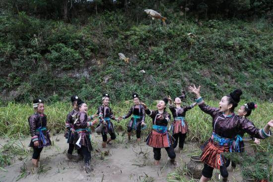 岑秋苗寨在外工作的年轻人在烧鱼节当天回到寨中,下田抓鱼,为傍晚的烧鱼做准备。