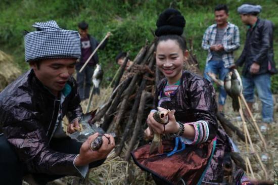 岑秋苗寨民众围用木棍刺穿鱼身,准备放置于火上炙烤。