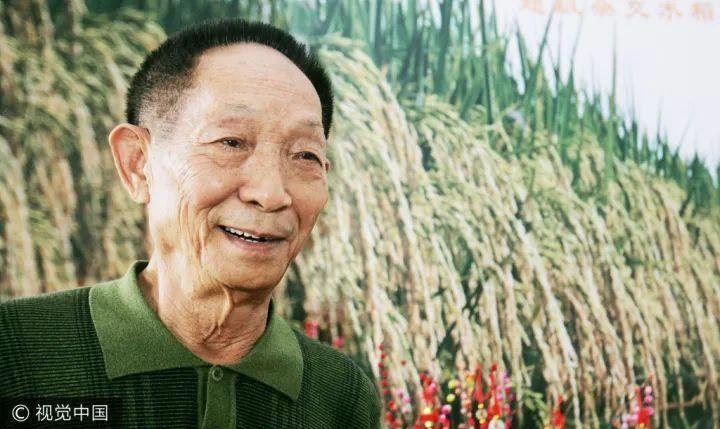 袁隆平又创一项世界奇迹 超级杂交水稻平均亩产1149.02公斤