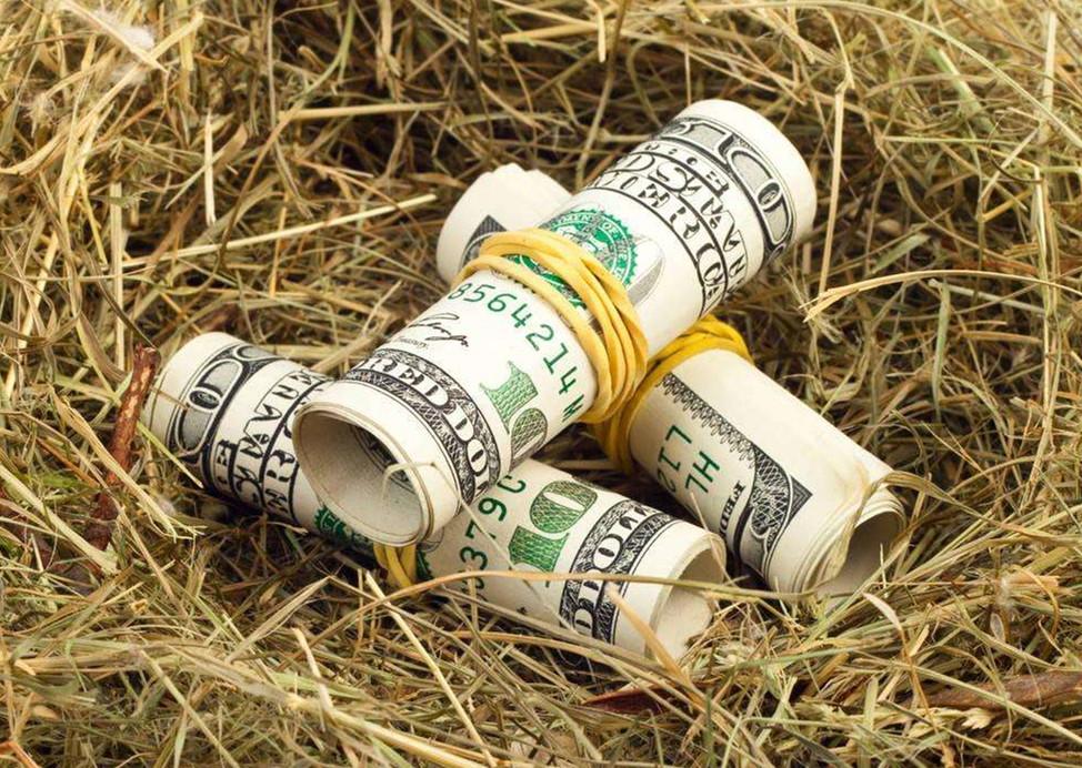加息预期上升 美元指数后市看涨?