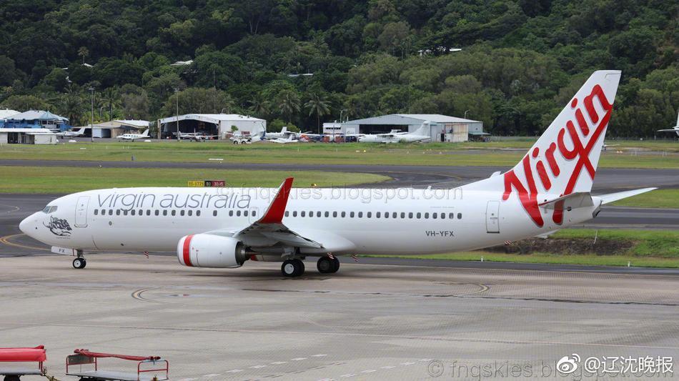 客机起飞遭老鹰野兔撞击 在墨尔本机场紧急降落