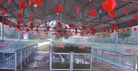 江西万年县顺利建成国内首个淡水珍珠培育实验室