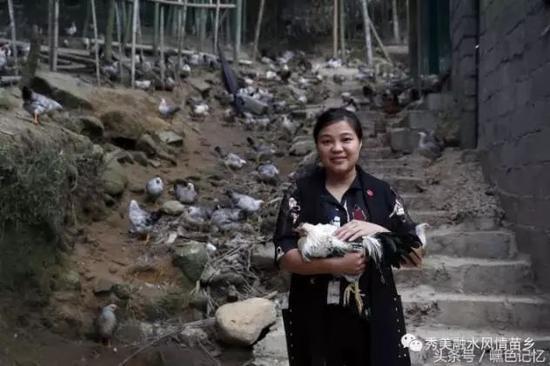 80后弃做白领回家养鸡 年出栏12万只产值达800万