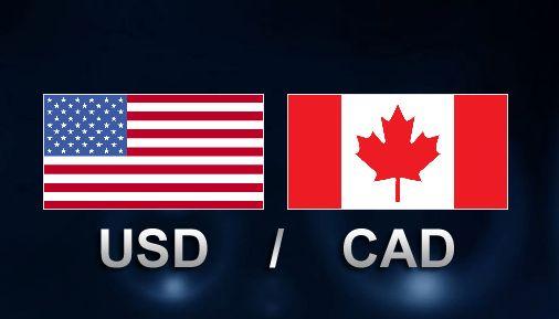 加拿大央行不加息 美兑加跳升逾100点!