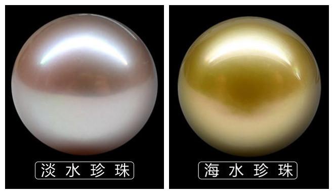 淡水珍珠和海水珍珠的区别
