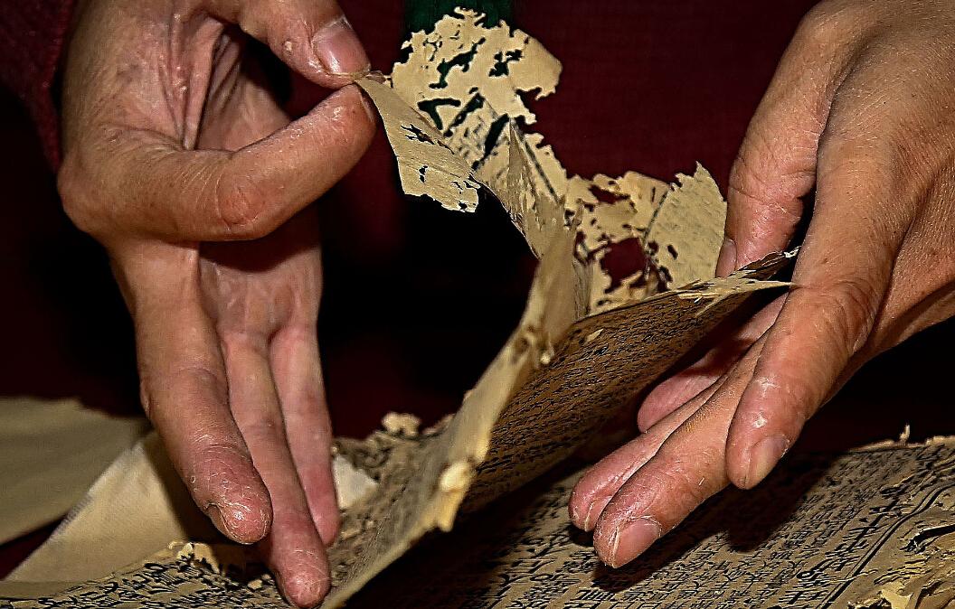高慧云现任河北美术学院讲师,毕业于河北大学,2006年开始从事古籍、碑帖、古字画修复装裱工作,至今已修复古籍约7000余册。
