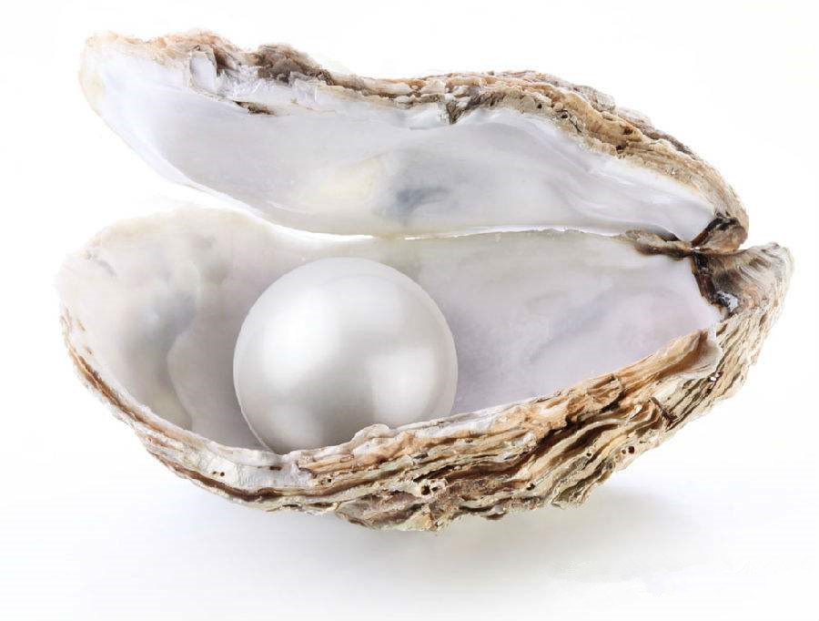 天然珍珠价格