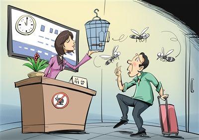 丽江客栈称蚊子是宠物 熏死一只要赔一百块