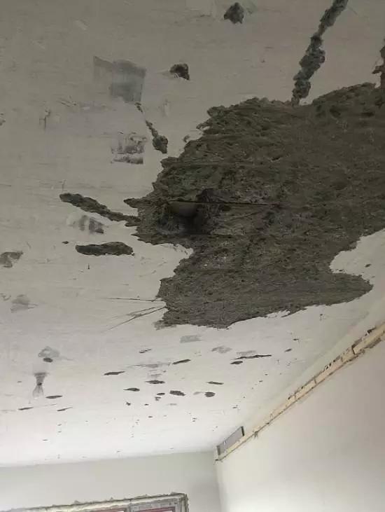 万科陷质量门 承重墙用手能抠下水泥块