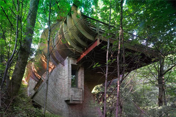 Wilkinson豪宅:与自然环境之间建立一种奇妙关系