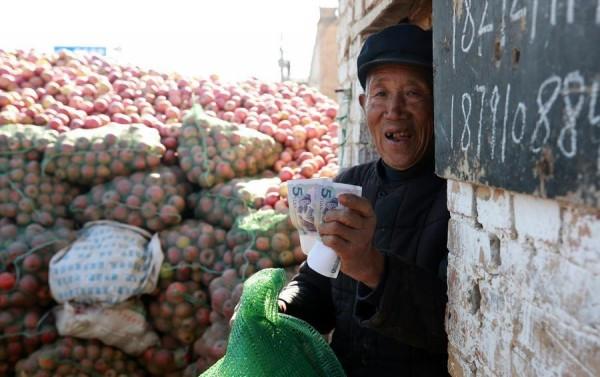 74岁老人卖320斤水果收入10元 每斤收购价3分钱