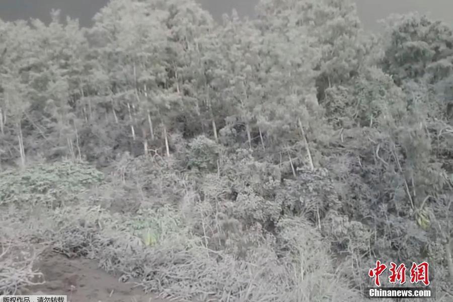 巴厘岛遭火山泥流冲击 所经之处一片白