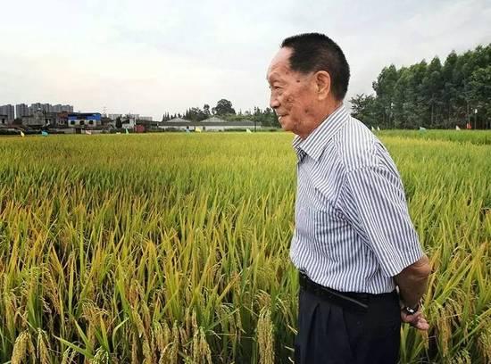 袁隆平:让中国水稻带给世界更多惊喜