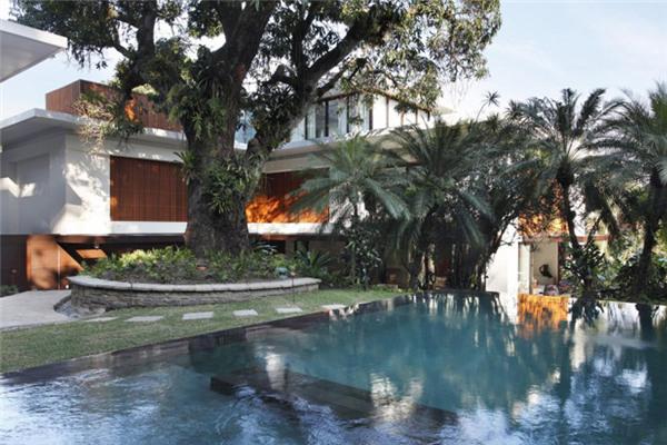 里约热内卢豪宅:充满异国情调的树木植被所环绕