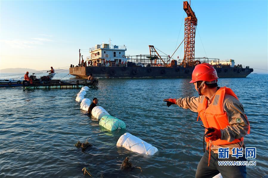 台防务部:如果大陆进攻 台湾致命伤是海底电缆