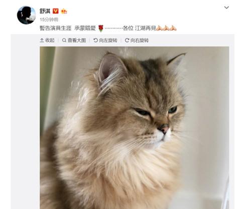 舒淇深夜发文:承蒙错爱江湖再见!