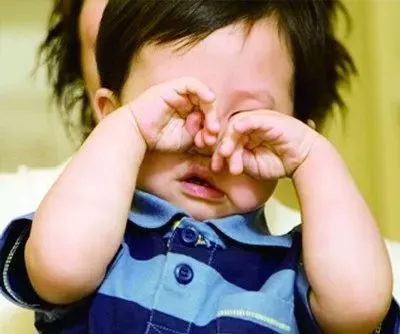 3岁男童眼睛里扎进17根刺 竟然是仙人掌的
