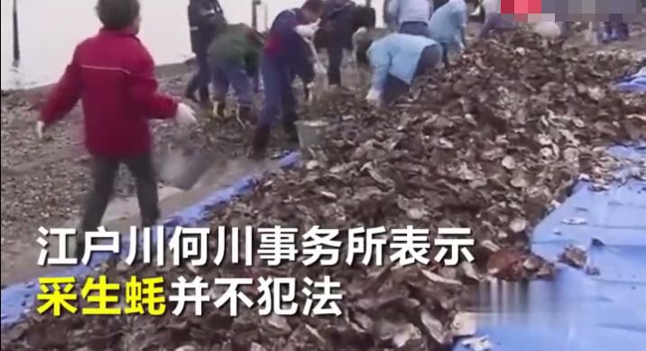 """接受采访的中国女性声称来自福建省,和她父亲一起来挖生蚝,""""听朋友说这里可以挖生蚝,就过来挖点拿回去炸着吃""""。"""