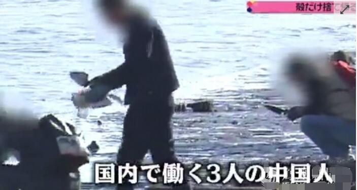 """报道援引""""妙典河流环境守护会""""会长藤原孝夫的话称,数年前开始有人前来挖掘生蚝,一般以5至10人的中国人组团来挖,人数多的时候多达100多人,慢慢的河边被扔的生蚝耗壳堆积如山。"""