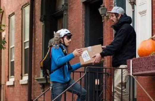 美国快递哥带猫咪送包裹 愿一直幸福下去