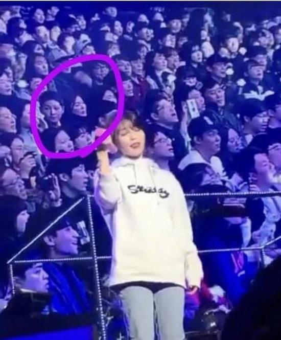 双宋合体看iu演唱会 让歌迷大感震惊