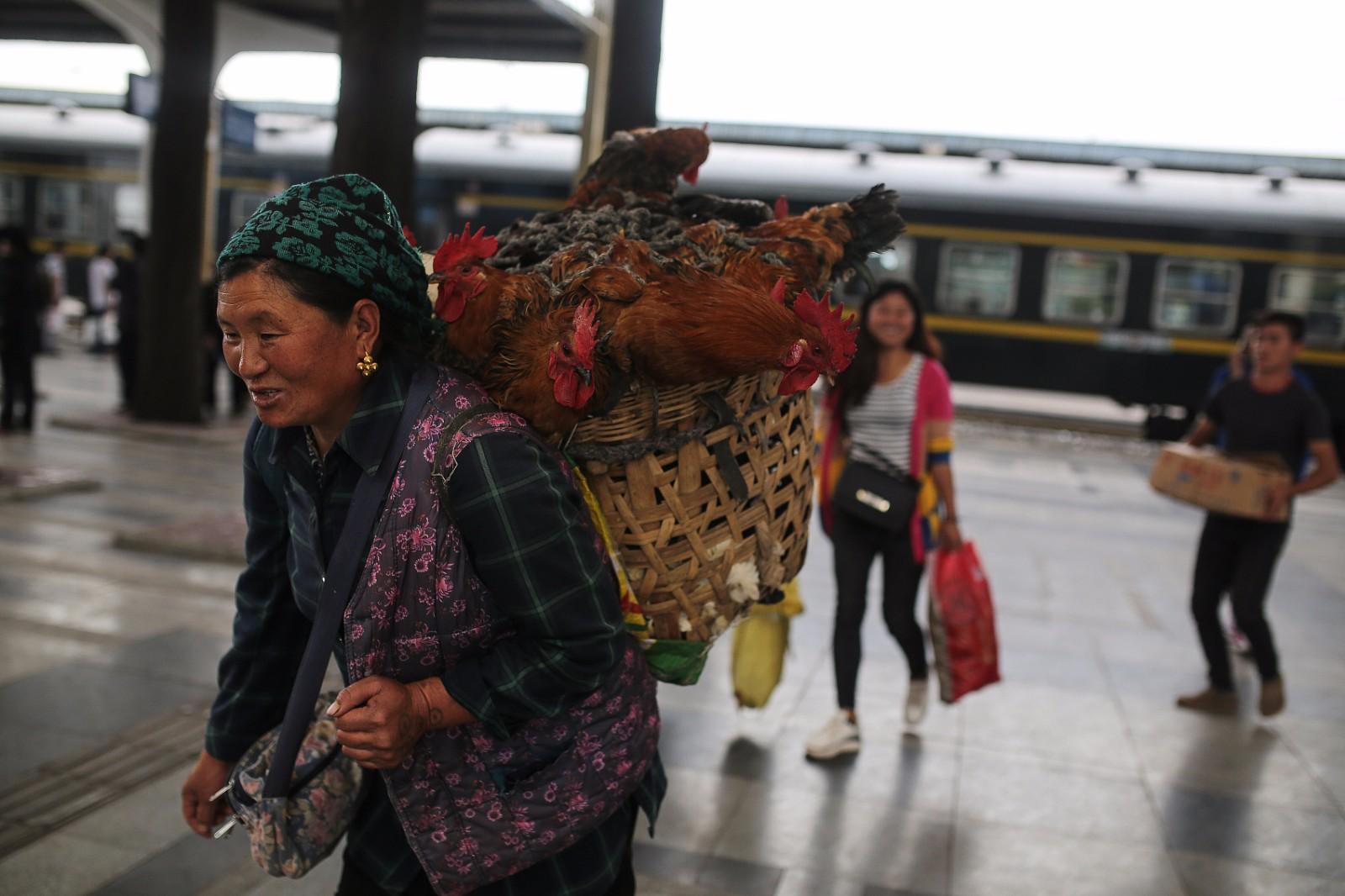 目前,全国铁路共开行这样的公益扶贫列车81对,主要分布在西南、西北和东北偏远贫困地区,2016年共运送旅客近3000万人次。