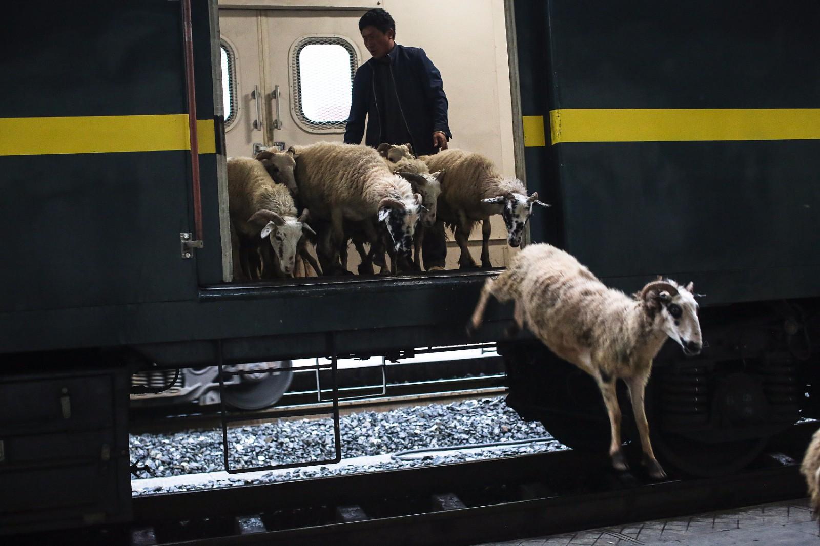 这样的火车,最低票价仅为2元,22年未涨价。