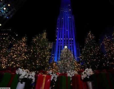 金融危机致美国圣诞树短缺 价格上涨一倍多