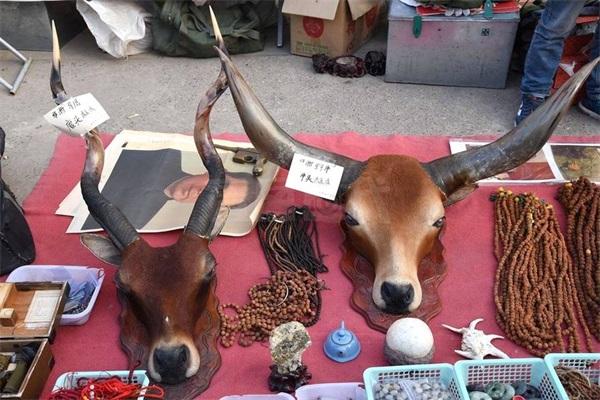 古玩市场藏品琳琅满目 你会买些什么带回家?