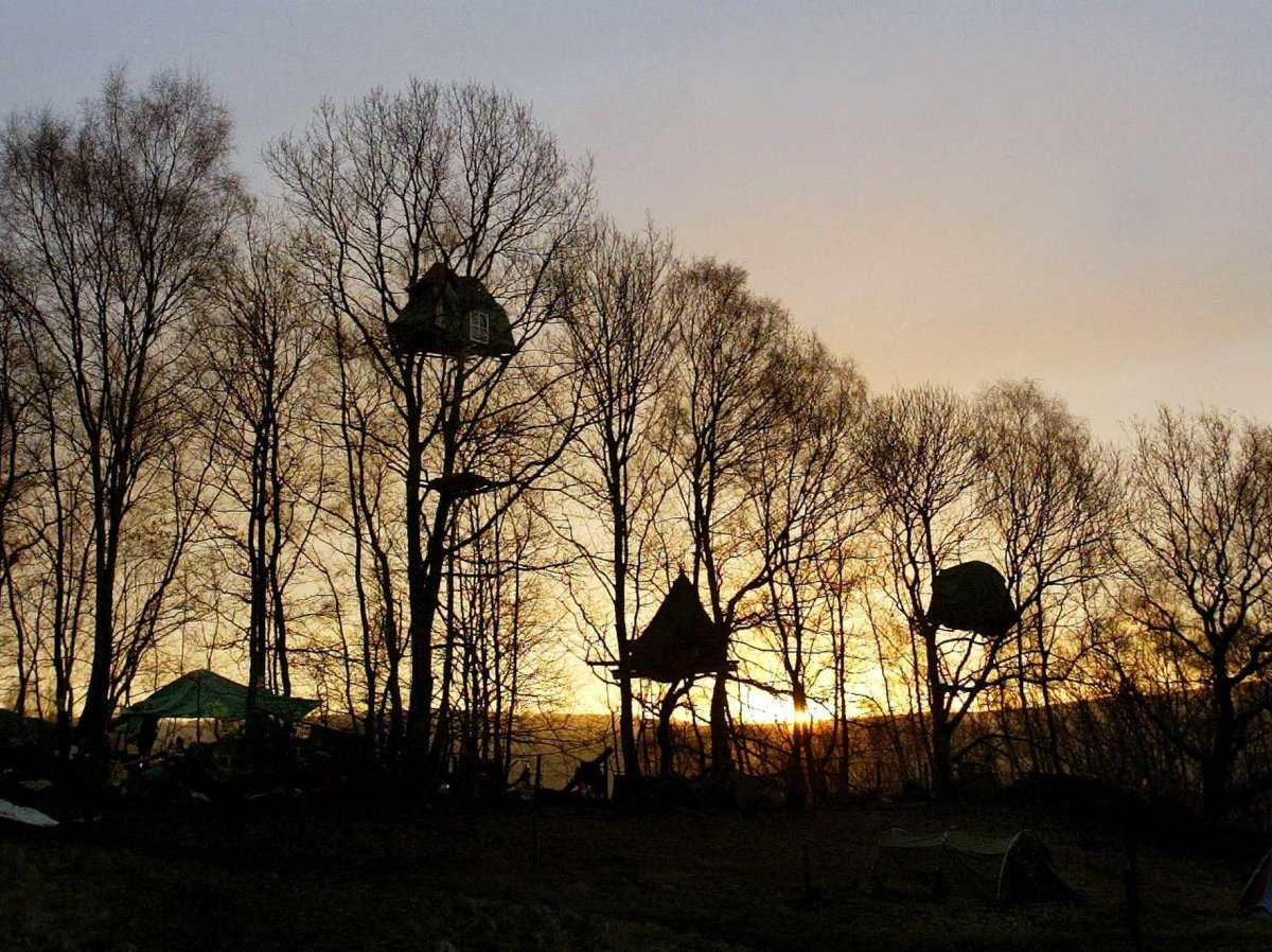 树屋<br /> 这些树屋位于英格兰北部德贝郡的Stanton Lees。4年前,尝试阻止这里被改造为采石场的抗议者住在树屋中,他们的抗议最终取得胜利。