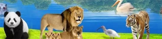 上海动物园现奇葩翻译 来游玩的外国友人惊呼看不懂