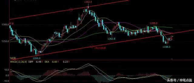 今日(12月19日)黄金欧元原油趋势策略