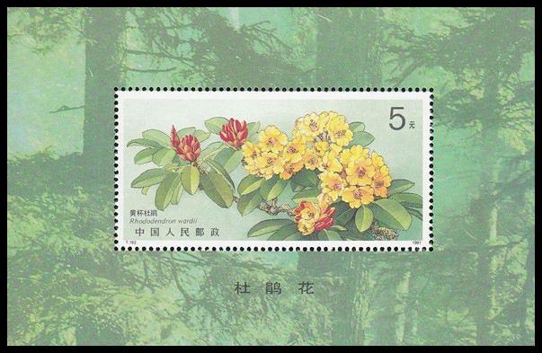 邮票价格及图片大全_小型张小全张邮票收藏价格表(2018年2月10日)