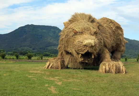 狮子,霸气而又有创意