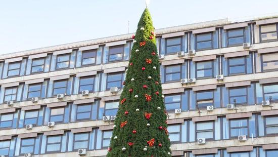 塞尔维亚现最贵圣诞树 花费约8.3万欧元遭市民吐槽