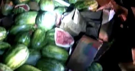 烟头烤熟3吨西瓜 都是疲劳驾驶惹的祸!
