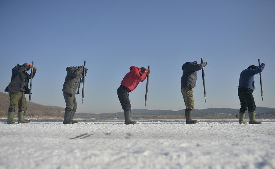 采冰人说,他们每人一天可采冰接近100立方米,约有90吨重,每立方米的价格为五六块钱。