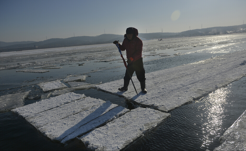 断冰是采冰过程中最具技术含量、也是最危险的环节,稍有不慎就有落水的危险。