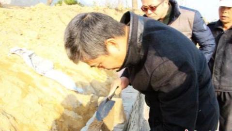 浙江省发现一座东晋古墓 出土青瓷器两件