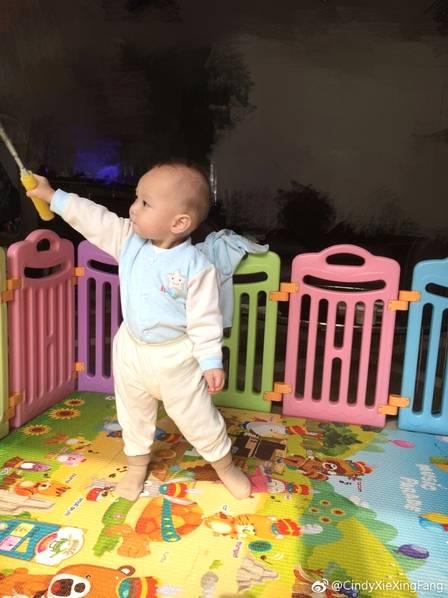 """谢杏芳甚至给林丹的爸爸角色几乎打了满分:""""如果满分100分的话,可以给爸爸林丹打99分。孩子出生之后,我看得出林丹对这个家更加用心,更加细致。""""深受感动的谢杏芳想要为林丹再生二胎:""""如果有机会,自己会考虑再要一个小孩。""""图中便是林丹和谢杏芳的孩子小羽。"""