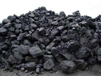 多家煤企下调煤炭价格 稳定春节市场行情
