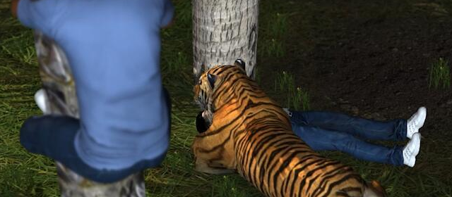 女子遭老虎咬惨死 3员工为自救迅速爬上棕榈树