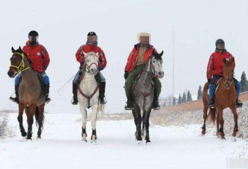 雪天骑马撞人逃逸 意外险保不保