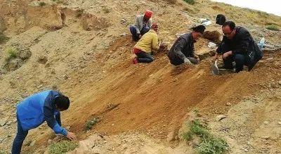 黄河边捡陨石论斤卖 价格200元左右一斤