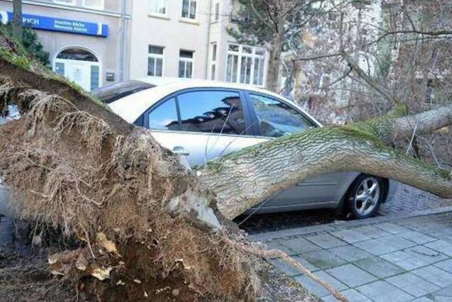 德国遭遇飓风袭击 六人丧生交通瘫痪