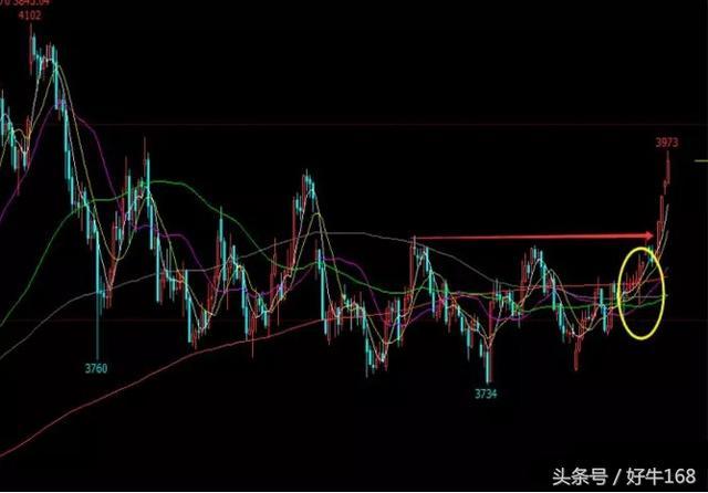 1月22日螺纹钢、沪铜等八大商品期货走势分析