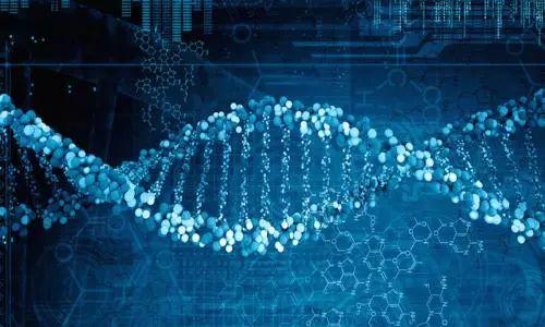 基因可以改写了 彻底根除人们患上某些疾病的可能
